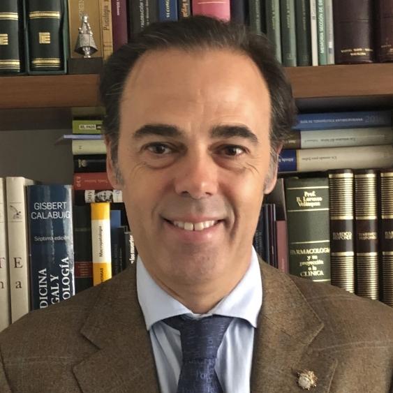 Dr. D. Ángel Hernández Gil